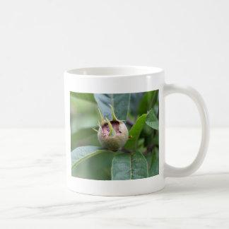 Fruit of the common medlar coffee mug