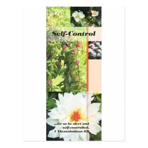 Fruit of the Spirit self control Postcards