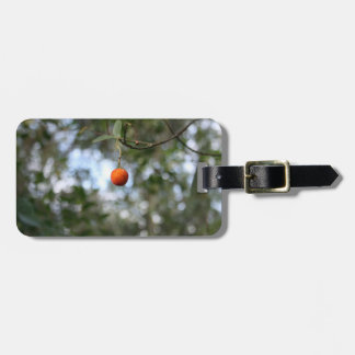 Fruit of the tree of madroño in the mountain range bag tag