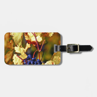 Fruit of the Vine Luggage Tag