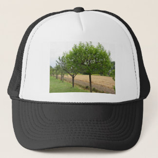 Fruit trees with green leaves in spring trucker hat