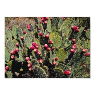 Fruited prickly pear cactus, Sonoran Desert Card