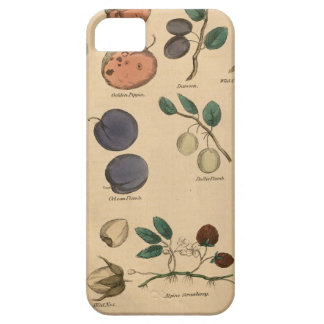 Fruits & Leaves iPhone 5 Case