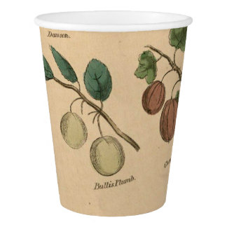 Fruits & Leaves Paper Cup