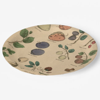 Fruits & Leaves Paper Plate