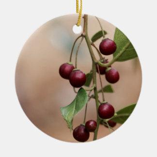 Fruits of a shiny leaf buckthorn ceramic ornament