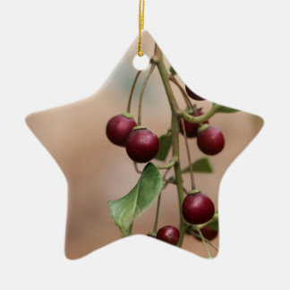 Fruits of a shiny leaf buckthorn ceramic ornament