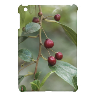 Fruits of a shiny leaf buckthorn iPad mini case