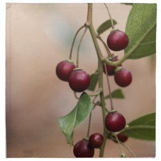 Fruits of a shiny leaf buckthorn napkin