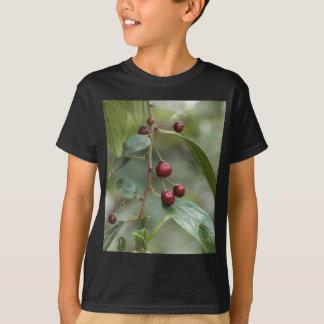 Fruits of a shiny leaf buckthorn T-Shirt