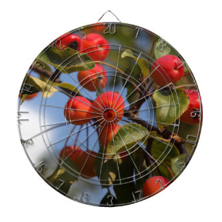 Fruits of a wild apple tree dartboard with darts