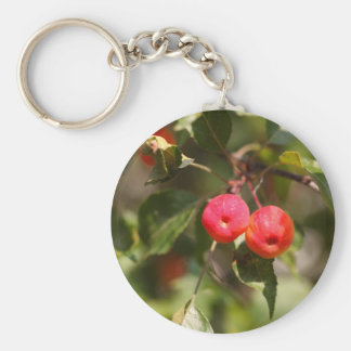 Fruits of a wild apple tree keychain