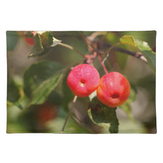 Fruits of a wild apple tree placemat