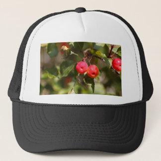 Fruits of a wild apple tree trucker hat