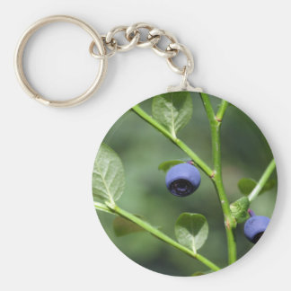 Fruits of the European blueberry Basic Round Button Keychain