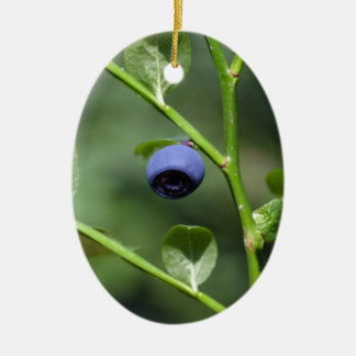 Fruits of the European blueberry Ceramic Oval Ornament
