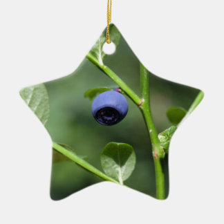 Fruits of the European blueberry Ceramic Star Ornament