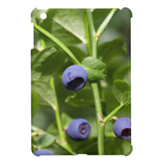 Fruits of the European blueberry Cover For The iPad Mini