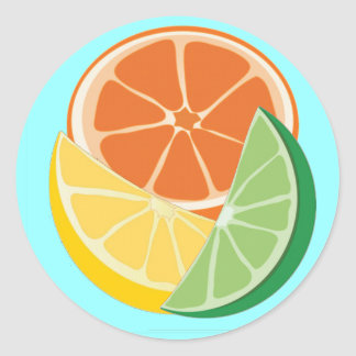Fruity and Fun Classic Round Sticker