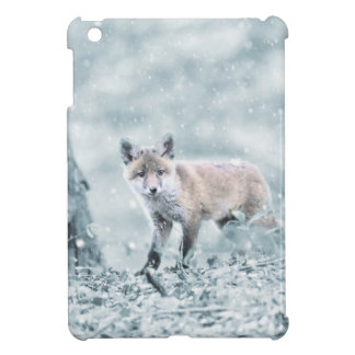 fuchs case for the iPad mini
