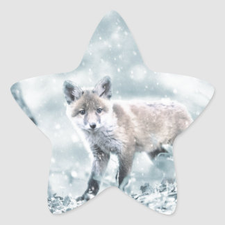 fuchs star sticker