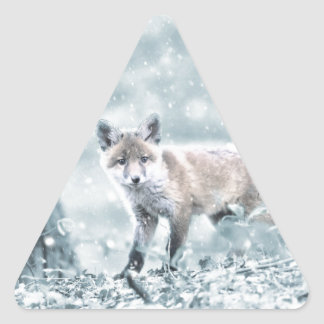 fuchs triangle sticker