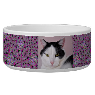 Fuchsia and Black Jewel Pet Bowl