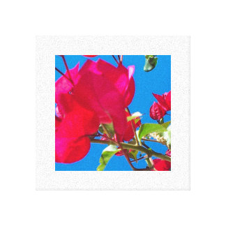 Fuchsia Buds and Blooms Canvas Print