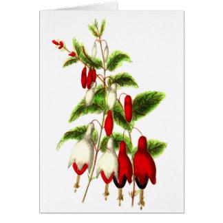 Fuchsia Card