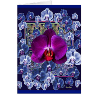 Fuchsia Orchid Bler-Grey Celestial Orchids Card