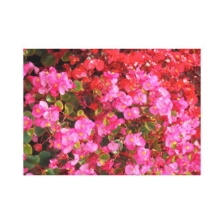 Fuchsia/Pink and Red Flowers Canvas Print
