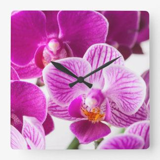 Fuchsia Pink White Dendrobium Orchid Flower Square Wall Clock