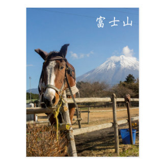 Fujisan Horse Postcard