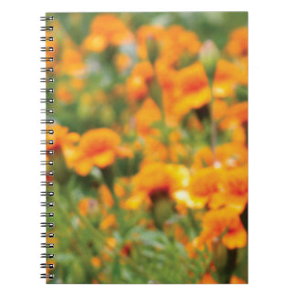 full flow of flowers notebook