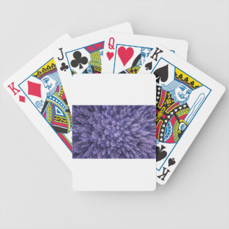 Full Frame Shot of Leaves Bicycle Playing Cards