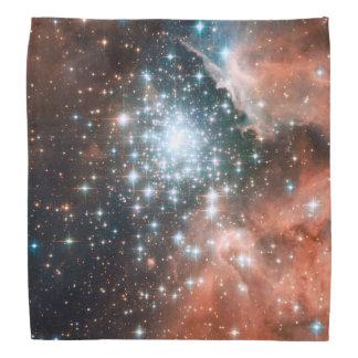 Full Hubble ACS Image of NGC 3603 Bandana