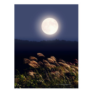 Full Moon 2 Postcard