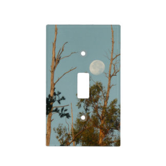 Full moon and eucaly[tus at Thousand Oaks Park Light Switch Cover
