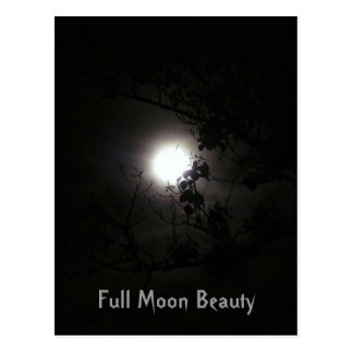 Full Moon Beauty Postcard