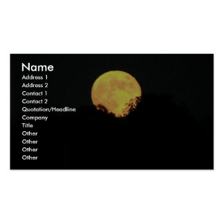 Full Moon Behind The Trees Business Card Template