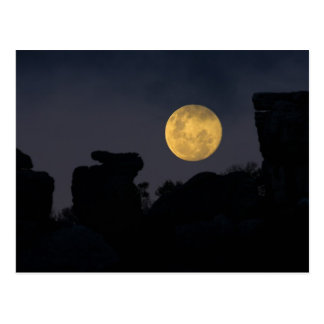 Full Moon in Wilderness, South Africa Postcard