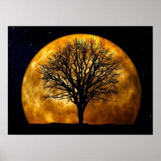 Full Moon Midnight Poster