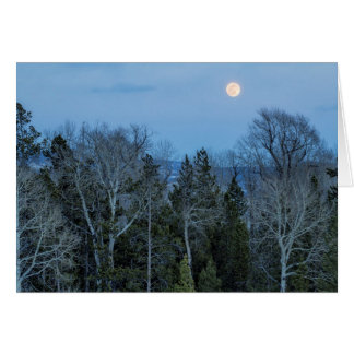 Full Moon Over Tree at Dusk Card