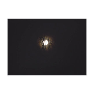 Full Moon Over Virginia Beach Gallery Wrapped Canvas