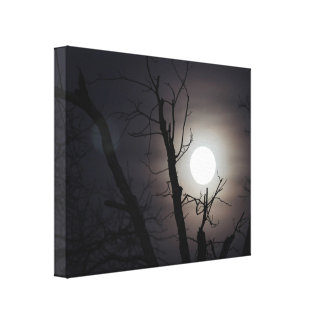 Full moon photograph canvas print