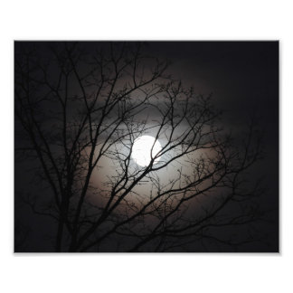 Full moon photograph with bare branches silhouette