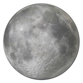 Full moon plate.  Why?  To freak out werewolves. Party Plates