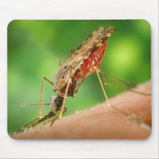 Full Mosquito - State Bird Mousepad