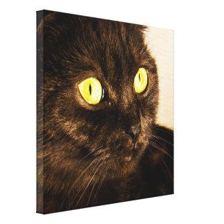 Full Munchkin Cat Face Canvas Print