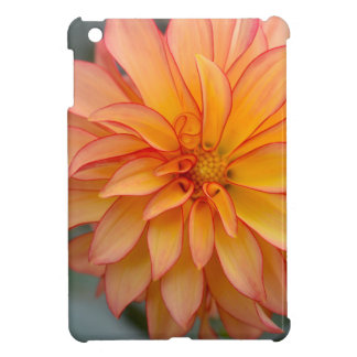 Full Of Glory Case For The iPad Mini